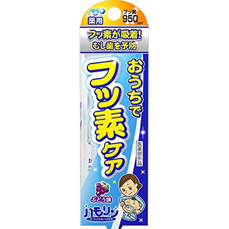 巨大な求人シロクマ丹平製薬 ハモリン ぶどう味 30g