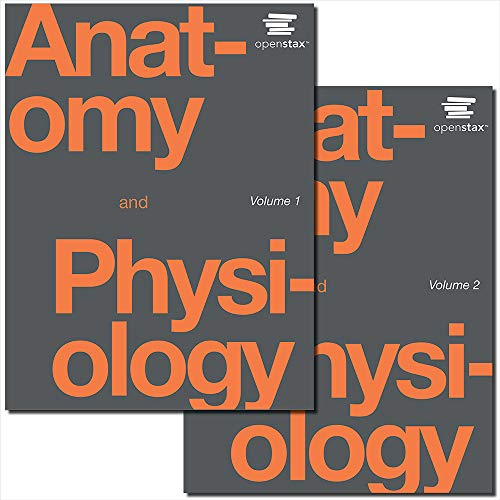 Compare Textbook Prices for Anatomy and Physiology by OpenStax paperback version, B&W 1st Edition ISBN 9781506698021 by OpenStax