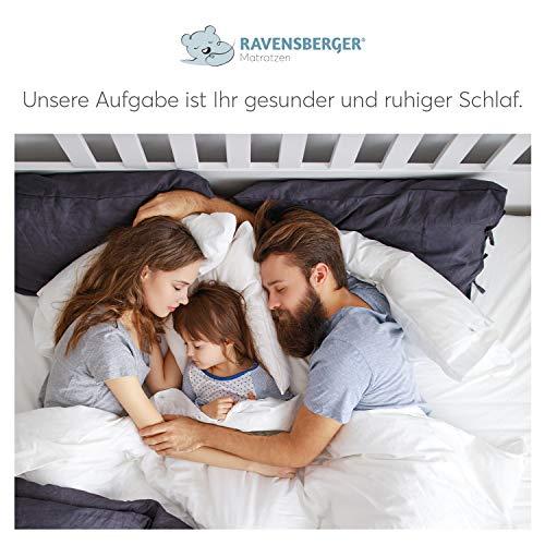 Ravensberger Struktura - 7