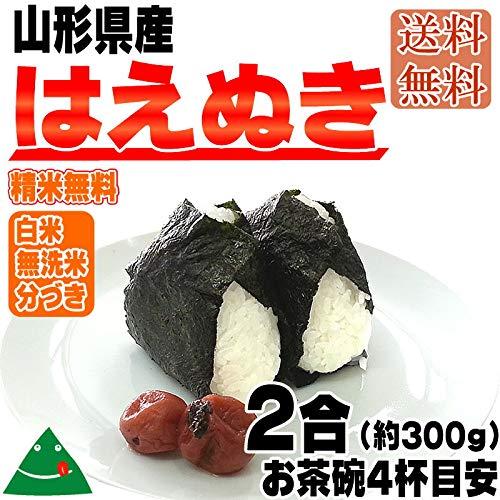 山形県産 はえぬき 令和元年度産 メール便 (送料込)2合(約300g) (7分づき)