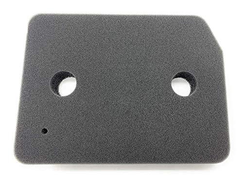 2 x Filtres pour Miele® Sèche Linge Pompe à Chaleur Filtre Mousse Filtre Éponge Taille 207x155x28mm (Remplace 9164761) (2 Filtres)