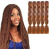 5 Piezas Extensiones de Cabello Trenzado Jumbo, Pelo Trenzado sintético 24 Pulgadas Trenzas Africanas para Trenzado de Ganchillo, Braiding Crochet Hair Twist Hair, con Pelo de Ganchillo