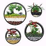 ISIK Set von 4 schwarzen runden Pflanzentöpfen zum Aufhängen an der Wand, Terrarium, Luftpflanzen-Halter, Wandbehang, Behälter für Sukkulenten in gemischten Größen