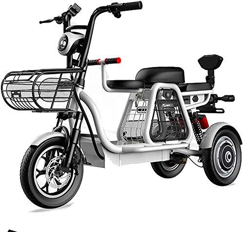 Bicicleta de montaña eléctrica, De tres plazas eléctrico triciclo, 48V500W motor, batería de larga duración y pantalla de alta definición LEC, faros LED / Choque múltiple sistema de absorción ,Bicicle