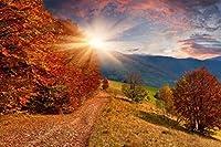 2000個の木製大人のパズル、減圧レ組み立てゲーム、最高のホリデーギフト- 秋の美しい山頂の眺め(75*105cm)