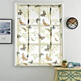 Wankd Estor enrollable con mariposas transparentes, cortina romana, corto, transparente, para casa/salón/dormitorio/cocina/cuarto de baño, decoración 120 x 140 cm