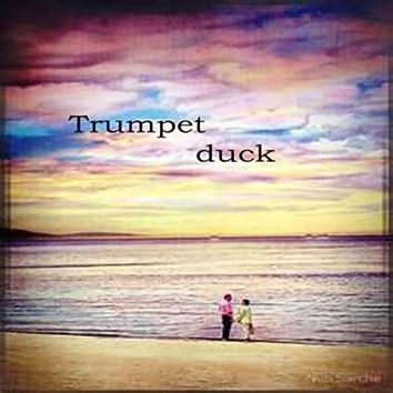 Trumpet  Duck