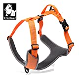 TRUE LOVE Dog Harness Outdoor Adventure II Reflective Vest with 2 Leash Attachments Matching Leash and Collar Available TLH6071 (Orange, L: Chest 68-82cm/27-32.5in