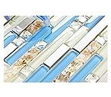 TST Glass Inner Conch Tile Beach Style Blue Cream White Brushed Steel Art Mosaic Kitchen Backsplash...
