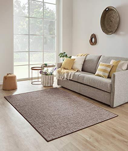 Carpet Studio Selina Alfombra Salón 160x230cm, Alfombras para Sala, Comedór & Dormitorio, Fácil de Limpiar, Superficie Suave, Pelo Corto - Marrón