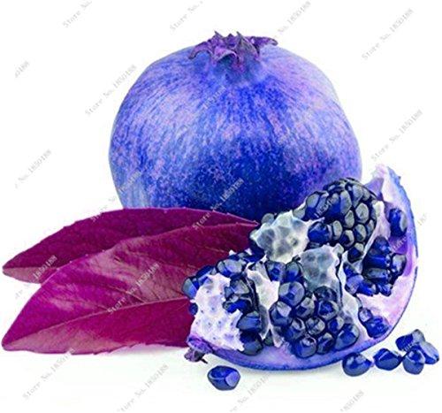 Grenade rare géant Graine Japon Bonsai savoureux fruits bio Heirloom non Ogm Multi Color Fruit Graine Arbre à feuilles persistantes 30 Pcs/Lot 11