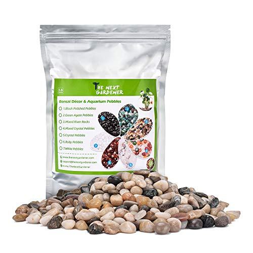 The Next Gardener Smooth Mixed River Stones Rocks, Natural Outdoor Decorative Stones Pebbles Bonsai Rocks for Succulents Plants, Aquariums, Landscaping, Vase Fillers, Fish Turtle Tank, 1.5 Pounds