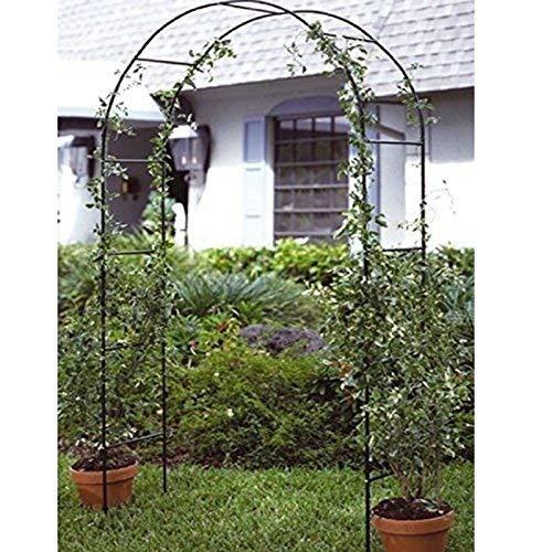 Gr8 - Pergola de jardín con rosas y marco alto de metal para plantas trepadoras: Amazon.es: Jardín