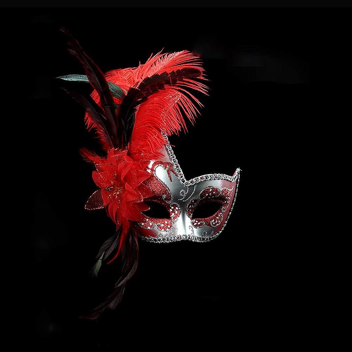 謎めいたお祝いラッドヤードキップリングNanle ハロウィンマスクハーフフェザーマスクベニスプリンセスマスク美容レース仮面ライダーコスプレ (色 : Red)