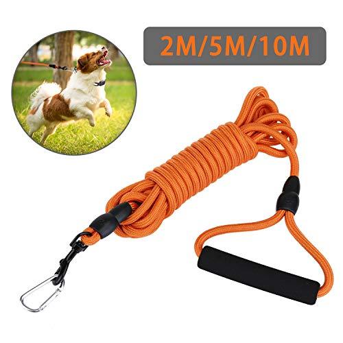 KATELUO Schleppleine 2m/5m/10m für Hunde,Seil Hundeleine für Welpen und Kleine Hunde,Geeignet für Hundewandern, Interaktion, tägliches Training.mit 2 Karabinerhaken,Handschlaufe (5M, Orange)