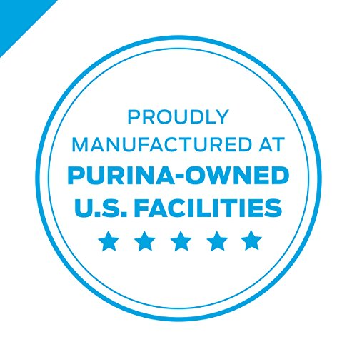 Purina Pro Plan High Protein Dry Kitten Food