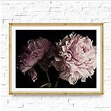 RuiChuangKeJi Oeuvre Peinture 70x90 cm sans Cadre Pivoine Noir et Rose Photographie Photo Fleur Pivoine Bouquet Affiche Imprimer pour Salon Home Art Décor