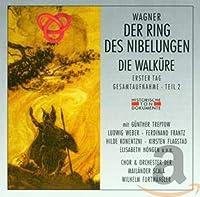 Der Ring Des Nibelungen/Die Walkuere (Erster Tag/Gesamtaufnahme Teil 2)