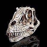 Modelo Médico Cráneo En Modelo Animal Dinosaurio Cráneo Material Resina Modelo De Estatuilla De Cabeza - Colección para Adorno De Barra Decoración Artesanal De La Mesa 20