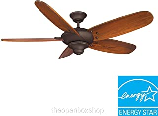 Best altura ceiling fan light kit installation Reviews