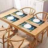 FloraGrantnan Decor - Mantel de mesa de comedor duradero con vistas a la playa en Cala Algaiarens de arena camino acantilado en agua Menorca Islan, reutilizables y antideslizantes, juego de 4