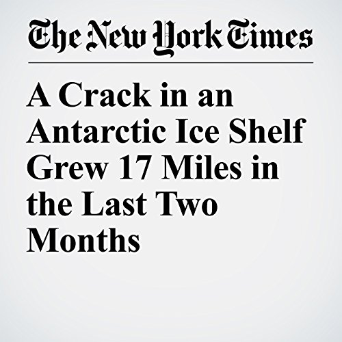 A Crack in an Antarctic Ice Shelf Grew 17 Miles in the Last Two Months copertina