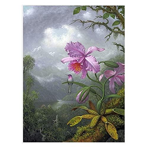 Antiguo botánico rosa orquídea colibrí bosque tropical ilustración carteles Vintage cuadro de arte de pared decoración del hogar-50x70 cm x1 sin marco