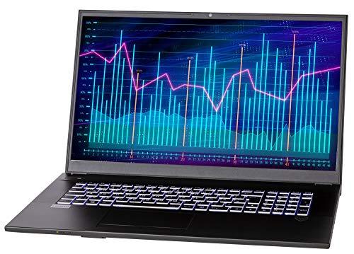NEXOC Office Notebook (17,3 Zoll Full HD) mit i7-10510U (4,90GHz Turbo!), Intel UHD Graphics 620, 250GB SSD, 16GB DDR4 RAM (B1702)
