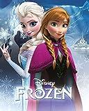 AFFICHE / Frozen/LA Reine des Neige - Anna ET Elsa - 40X50cm Poster