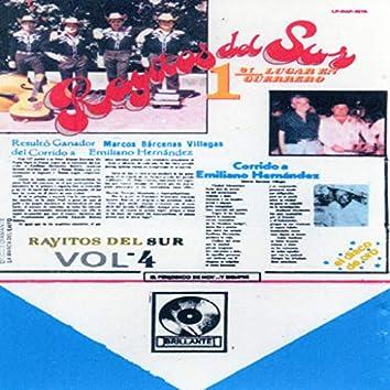 Rayitos Del Sur, Vol. 4