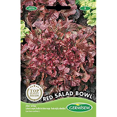 Germisem Red Salad Bowl Semillas de Lechuga 4 g
