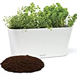 Window Garden Aquaphoric Herb Garden Tub - Self Watering Planter + Fiber Soil, Keeps Indoor Kitchen Herbs Fresh and Growing for Weeks on Your Home Windowsill. Compact, Attractive and Foolproof.