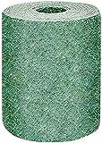 Rotolo di tappetino per semi di erba, erba biodegradabile Tappeto di coltivazione per prato Tappeto per piantare fertilizzante Coperta di germinazione per semi di erba, basta arrotolare acqua e c