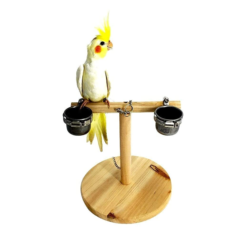 Litewood Bird Perch Wood Training Stand Wooden Platform Stand Birdcage Play Gym for Cockatoo Parakeet Conure Cockatiel Cage Accessories Exercise Toy
