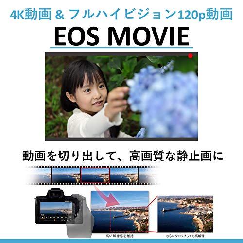Canon(キヤノン)『EOSM6MarkII(3611C004)』