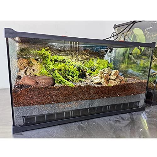 MNCYGJ Caja De Cría De Reptiles Transparente, Caja De Alimentación De Insectos, Caja De Reptiles Transparente Caja De Cría De Reptiles De Vidrio Transparente, Estuche De Cría De Reptiles