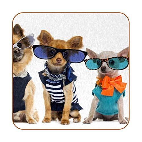 Bennigiry Perros de Halloween disfrazados Posavasos de Cuero Taza de café Cuadrada Taza de Vidrio Manteles Individuales Tapetes para Tazas Manteles Individuales 6 PCS