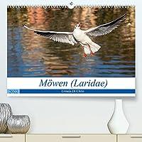 Moewen (Laridae) (Premium, hochwertiger DIN A2 Wandkalender 2022, Kunstdruck in Hochglanz): Aufnahmen wildlebender Moewen (Monatskalender, 14 Seiten )