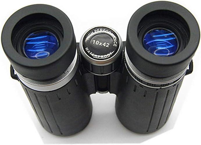 RZJ-telescope Les Jumelles, Haute Puissance HD 10x42, Peuvent être utilisées pour l'observation des Oiseaux de Chasse en déplacement