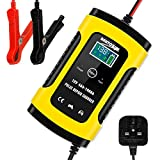 Hutigertech Car Battery Charger & Maintainer 6A 12V Fully Automatic Battery Charger with LCD Screen, Used to Charger, Maintain and Repair Batteries for Cars, Motorcycles, Boat and More