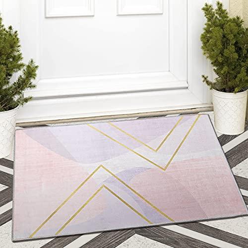Fußmatte für drinnen und draußen, rutschfest, sehr saugfähig, 60 x 90 cm, Violett
