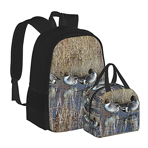Pintail Ducks Birds Bolsas escolares Mochila con caja de almuerzo, combinación adecuada para adolescentes, niños, niñas, viajes, camping, mochila juvenil