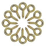 ECKJ Screw Eye Hooks Metal Eye Hook 16 Pieces Golden Copper Plating Metal Cup Hooks Eye Shape Screw Hooks Self Tapping Screws Hooks Ring