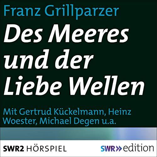 Des Meeres und der Liebe Wellen audiobook cover art