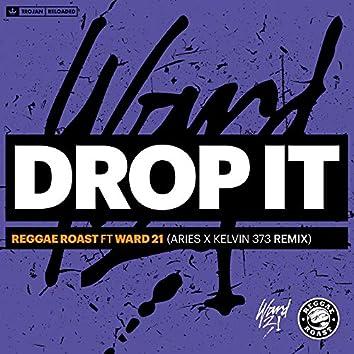 Drop It (feat. Ward 21) [Aries & Kelvin 373 Remix]