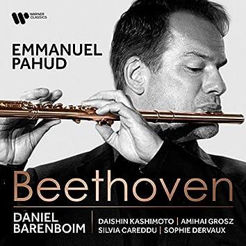 Beethoven: Works for Flute