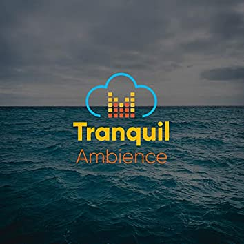 # Tranquil Ambience