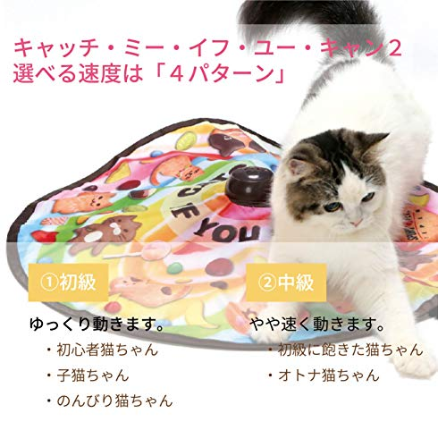 猫壱『キャッチ・ミー・イフ・ユー・キャン2』