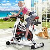 MGIZLJJ Indoor Spinning Ejercicio Ciclo de la Bici Bicicleta estacionaria