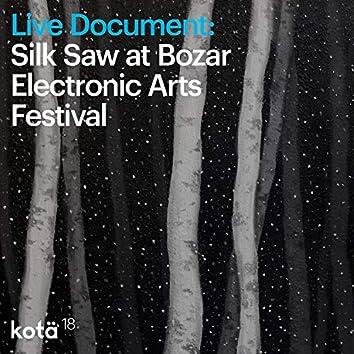 Live Document: Silk Saw at Bozar Electronic Arts Festival (Live at Bozar Electronic Arts Festival, Bruxelles, Belgium, 2016)